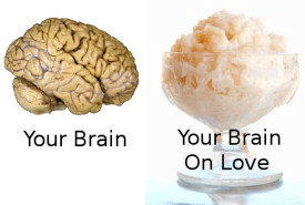 your-brain-on-love