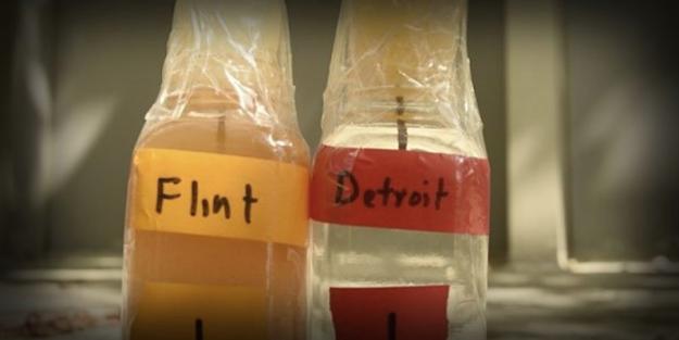 elite-daily-flint-michigan-water-crisis-twitter